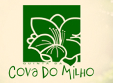 "Website ""Quinta Cova do Milho"""
